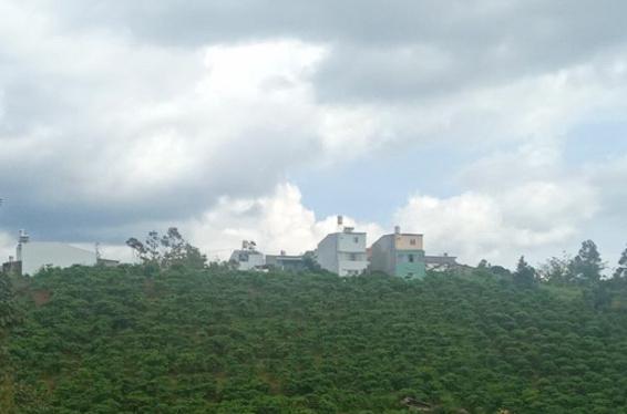 Lô Đất hẻm Phan Đình Phùng nay kẹt tiền nên bán gấp