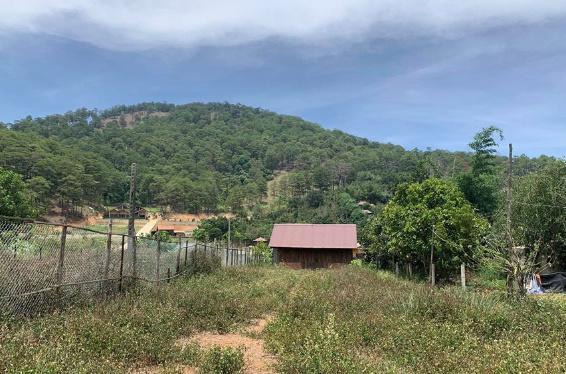 Đất Lâm Đồng đang hót mua ngay giá chỉ 7 tỷ lô 460m2