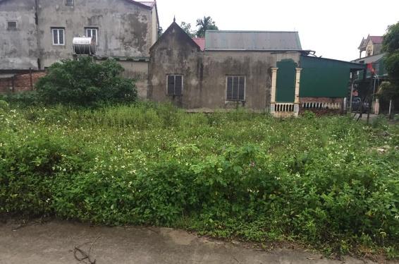 Bán đất chính chủ ngõ 5m đường Lê Quý Đôn, Hưng Lộc