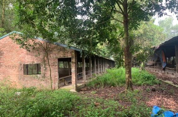 Trang trại xã Thanh Vân, đất rừng sản xuất